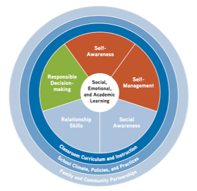 The Challenge of Choosing an SEL Framework